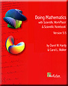 Cover of Doing Mathematics with
